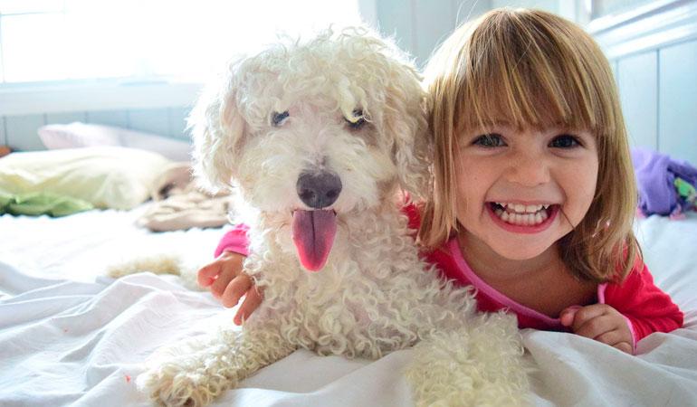 Las mascotas nos dan amor de forma gratuita, sin esperar nada a cambio.